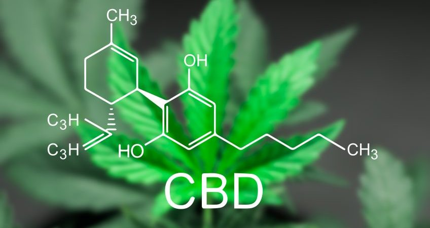 WHAT IS CBD, WHAT DOES IT STAND FOR, AND WHAT CAN IT DO FOR YOU?